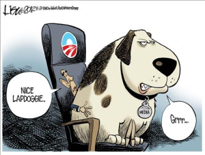 The lapdog media