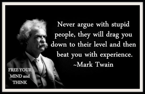 Twain on stupidity