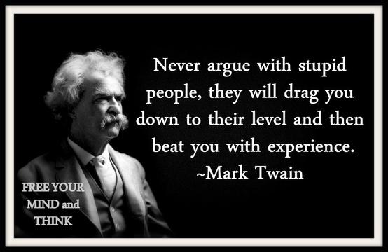 Twain on stupidity